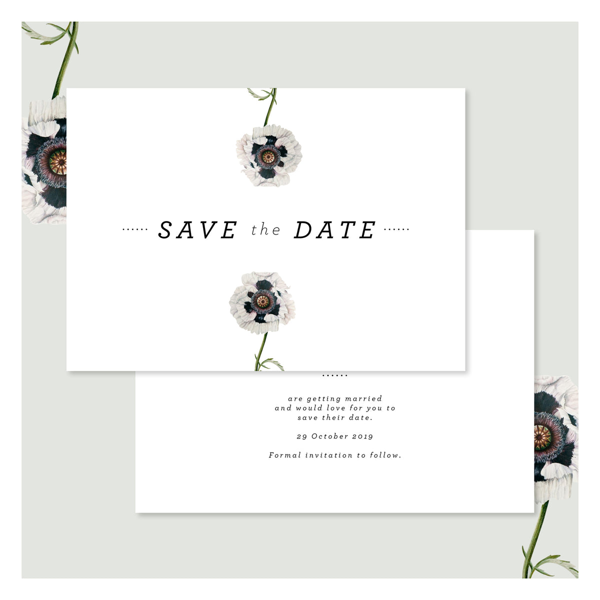 Modern Venus in Arctic White • Save the Date