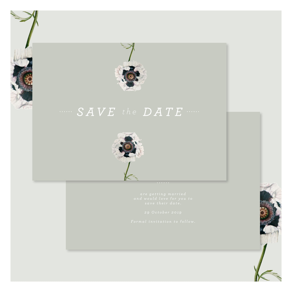 Modern Venus in Sage Green • Save the Date
