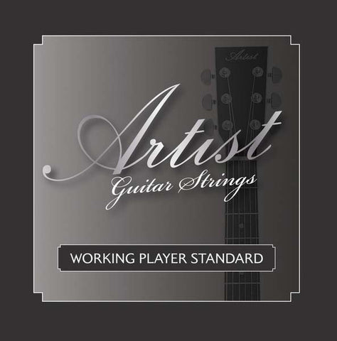 Artist ACST104712 12 String Acoustic Guitar Strings Bronze
