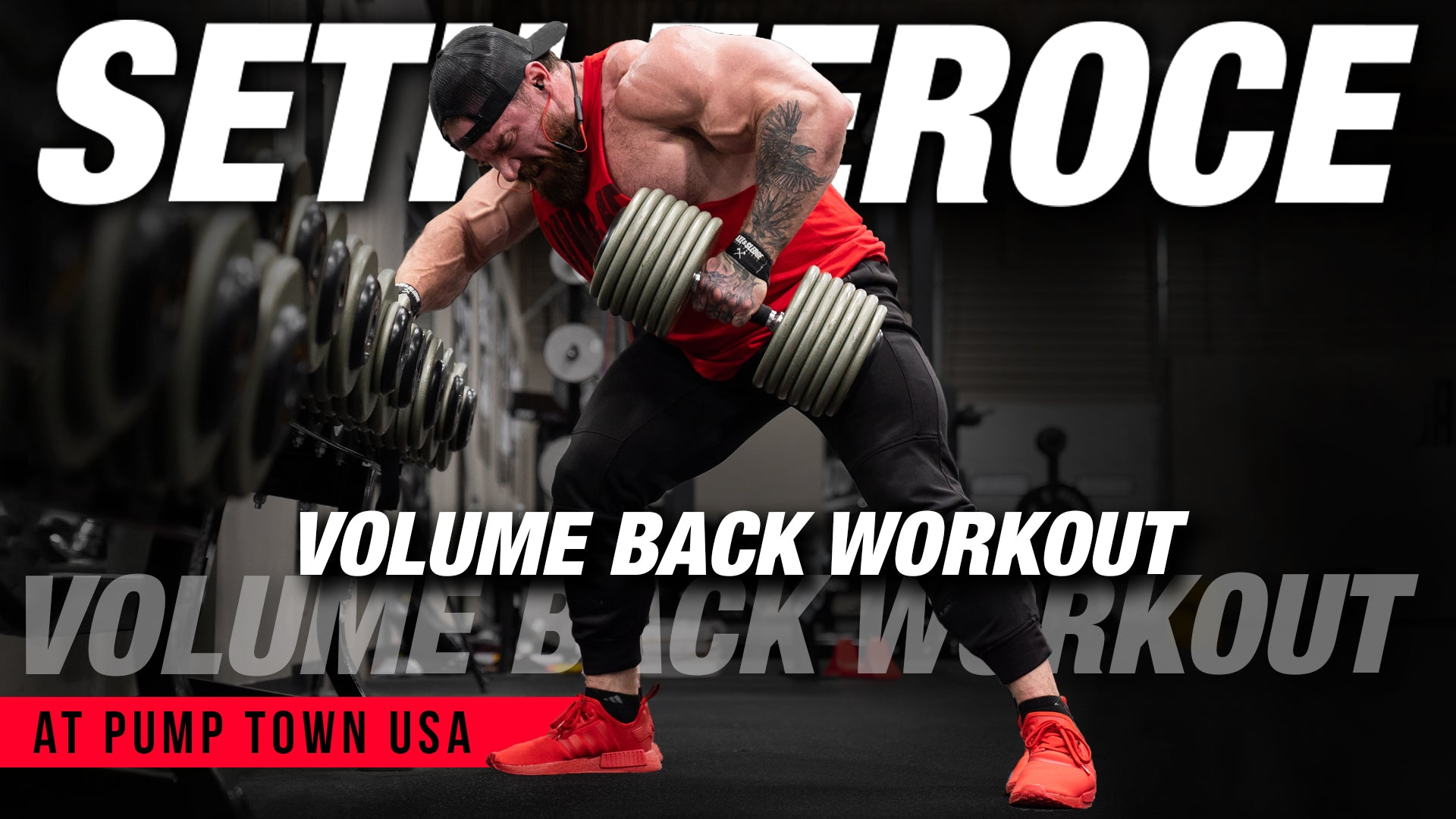 Volume Back Workout