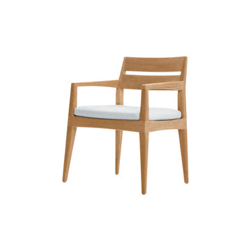 SO101 Dining Arm Chair With Cushion