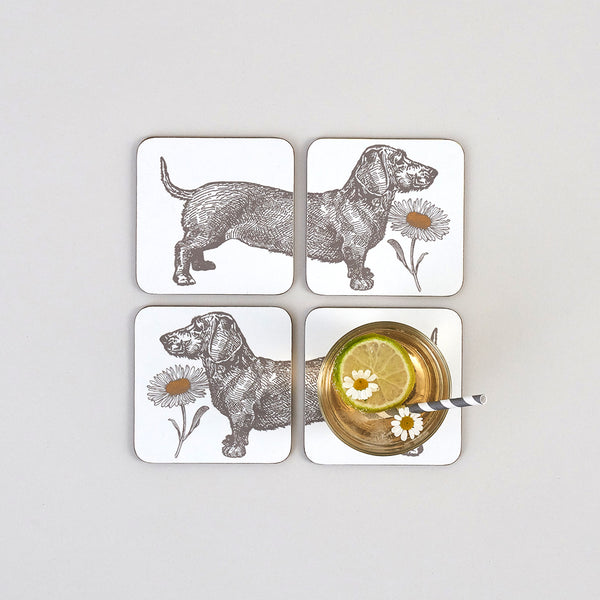 Dog & Daisy Coaster Set of Four