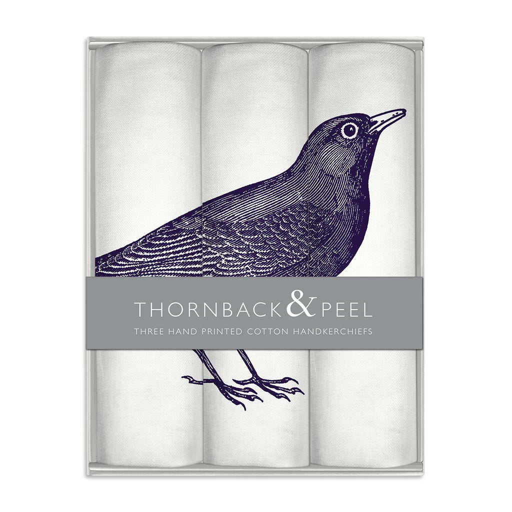 Blackbird Hanky Box