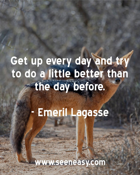 Get up every day and try to do a little better than the day before. Emeril Lagasse