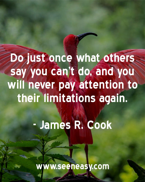 Do just once what others say you can't do, and you will never pay attention to their limitations again. James R. Cook