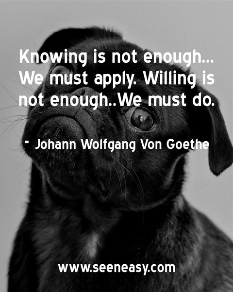 Knowing is not enough..We must apply. Willing is not enough..We must do. Johann Wolfgang Von Goethe
