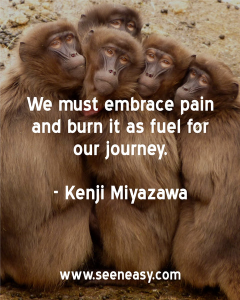 We must embrace pain and burn it as fuel for our journey. Kenji Miyazawa