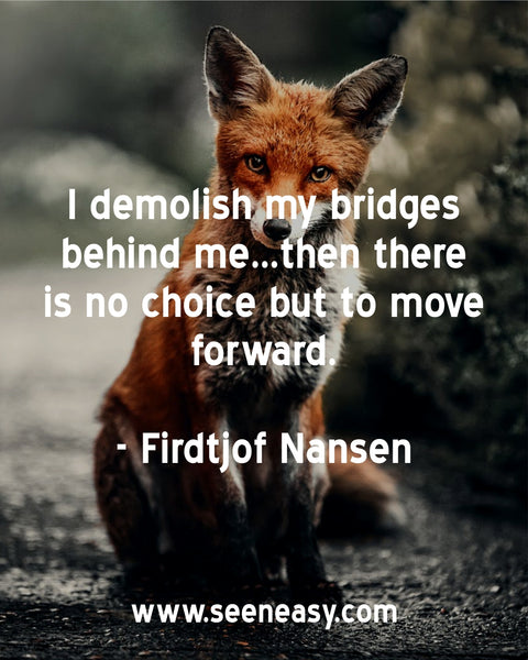 I demolish my bridges behind me…then there is no choice but to move forward. Firdtjof Nansen