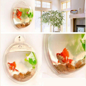 Wall Mounted Fish Bowl-Acrylic