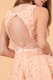 3D Floral Applique Lace Short Dress
