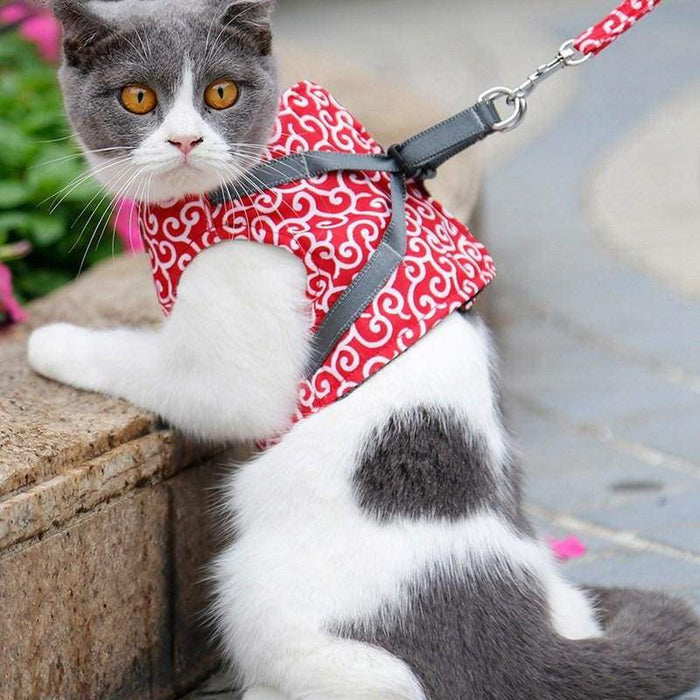 Cat Jacket Harness and Leash - uspetsuperstore