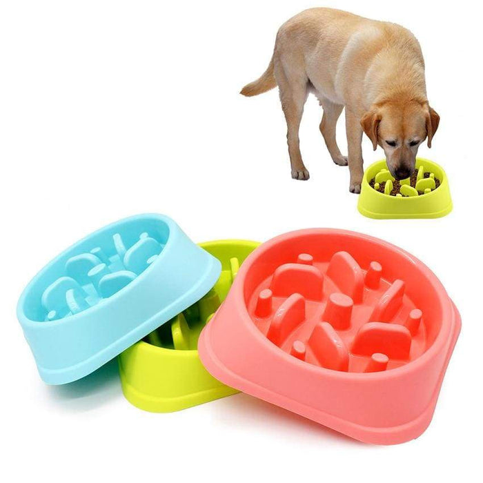 Dog Slow Feeder Anti-Choking Pet Feeding Bowl - uspetsuperstore