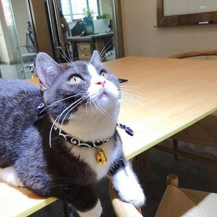 Japanese Style Adjustable Collar Pet Cats - Geloft Store