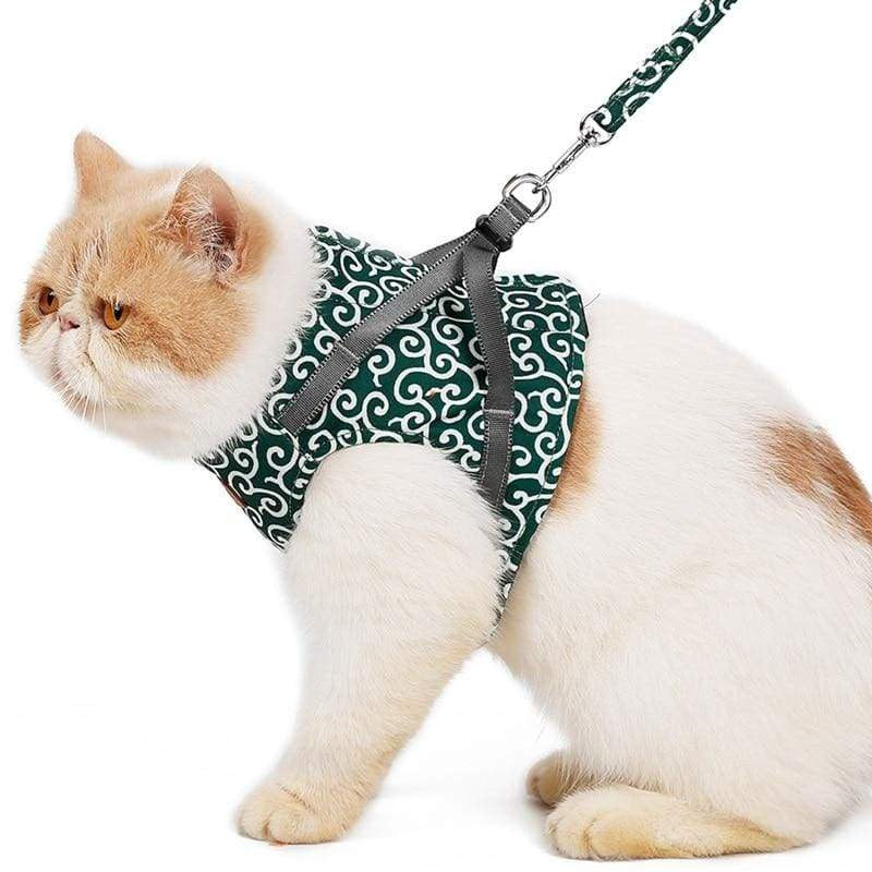 Pet Small Dog Cat Harness Leash - Geloft Store