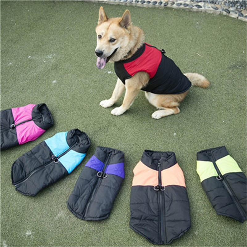 Windproof Winter Warm Pet Dog Coat Jacket | Uspetsuper store
