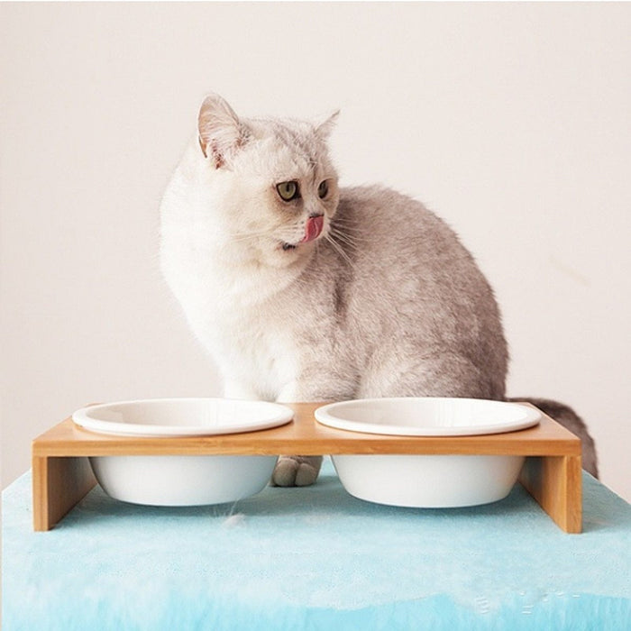 Cat Dog Feeders Bowl Ceramic Tableware 1/2/3 Bowls