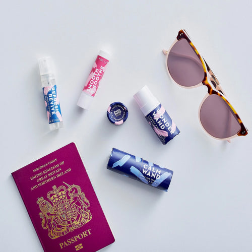 Pretty Useful Tools Travel Emergency Kit