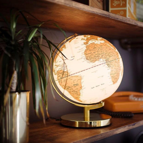 Wild Wood 10 Inch Arctic White Globe Light
