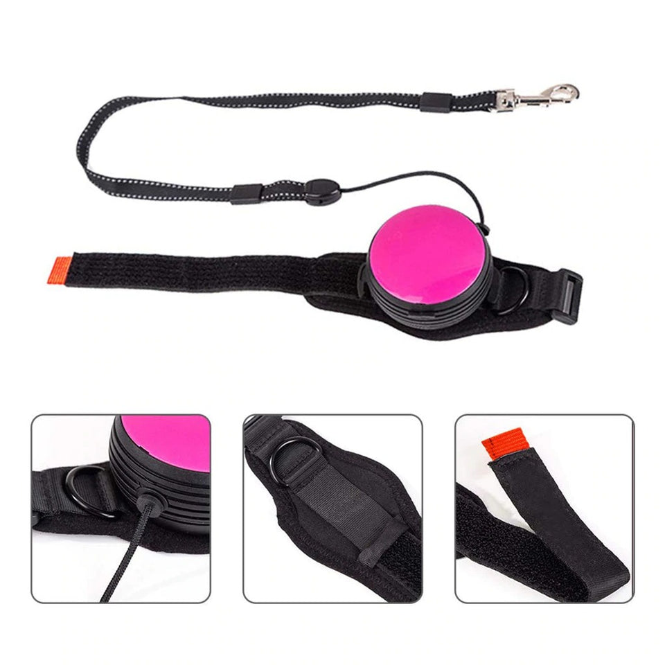 Doggiemon Intelligent Leash