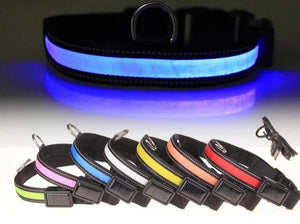 Solar Powered LED Collar