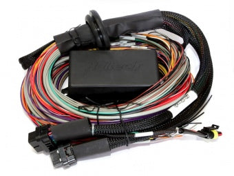 Haltech HT-141304 Elite 2500 - 2.5m (8 ft) Premium Universal Wiring Harness Only