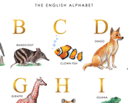Animal Alphabet Chart English A2 Close Up