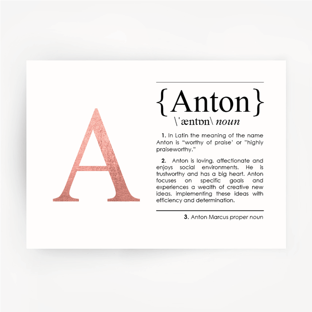 Name Definition Art Rose Gold Foil Print ANTON