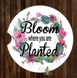 Succulent Wreath Bloom Where You are Planted Set of 2 Car Coasters - Car Coasters