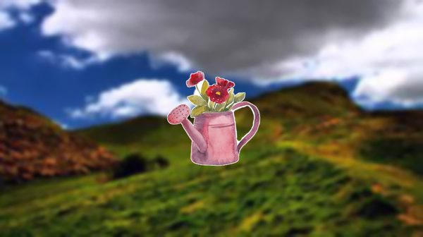 Flowering Watering Can