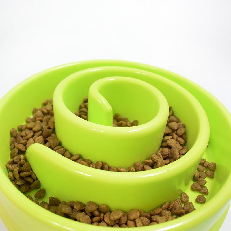 The Stylopedia pet care Slow Feeder Bowl For Cats & Dogs