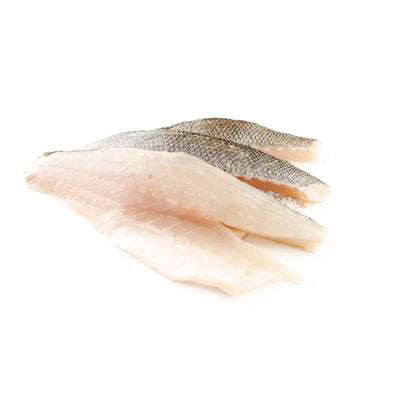 FISH - WHITE SNAPPER FILLET