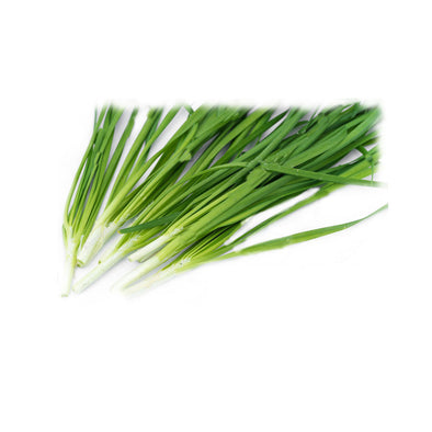 FRESH GREEN GARLIC WITH LEAVES