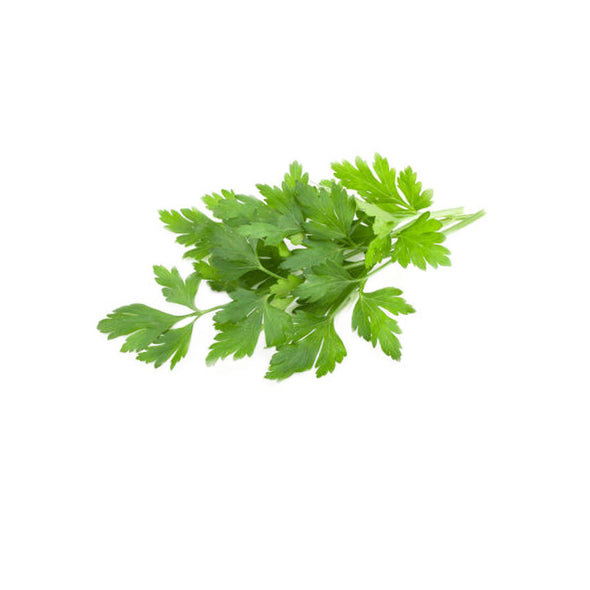 PARSLEY - FLAT LEAF