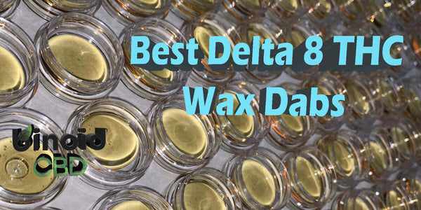 Delta 8 THC Wax Dabs Concentrates Shatter Buy Online For Sale