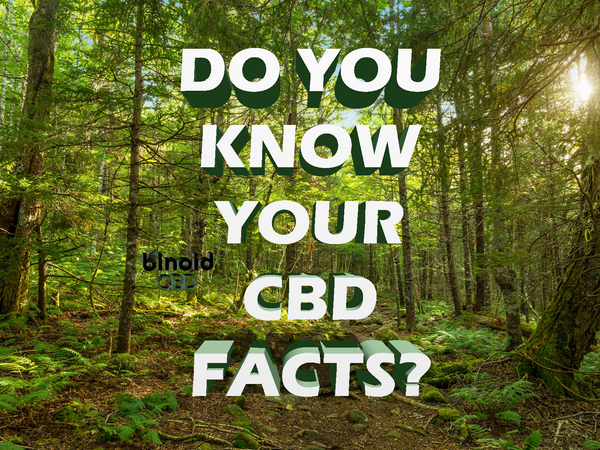What is Hemp CBD Oil?