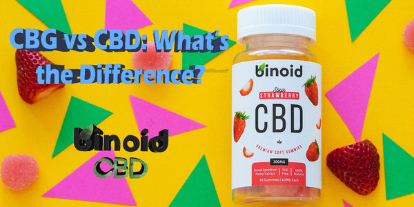 CBG vs CBD benefits side effects differences and uses