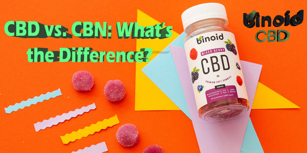 CBN vs CBD What's the Difference What is it benefits