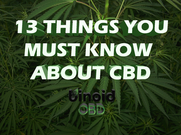 13 things you must know about Hemp CBD What it is How to take it how long does