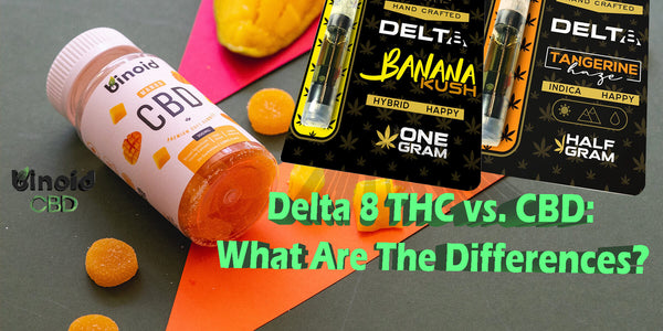 Delta 8 THC vs CBD: What are the differences