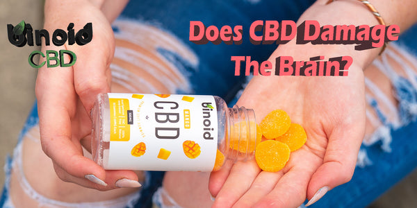 Does CBD Oil Damage The Brain