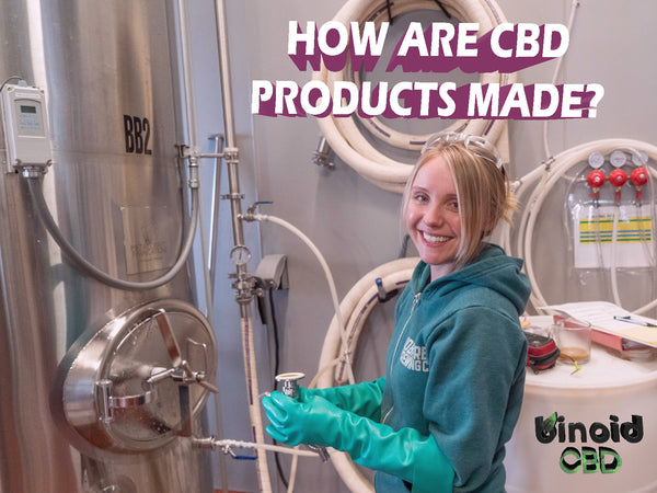 How are CBD products made?
