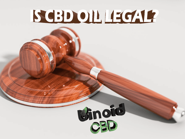 The Reason Why CBD Oil Is Legal