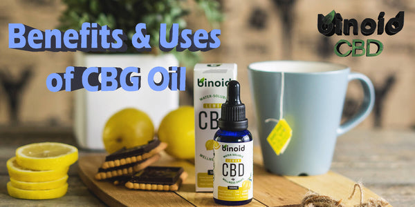 CBG Oil Benefits and Uses CBD Hemp