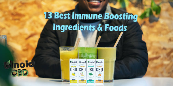 Best Immune System Boosting Ingredients Superfoods Support