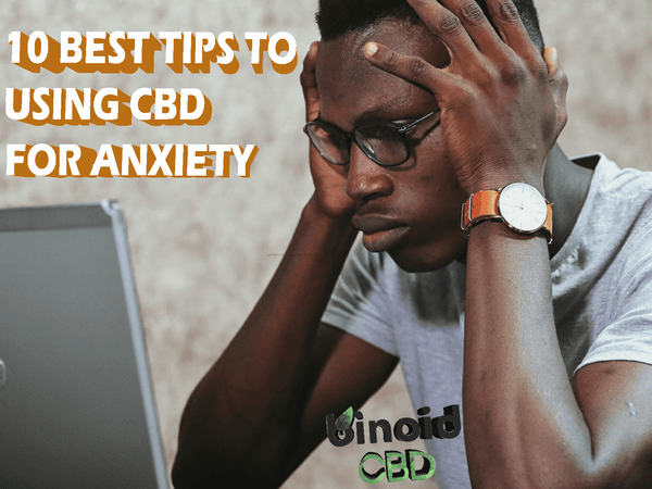 How to use CBD oil for anxiety, stress, and nervousness