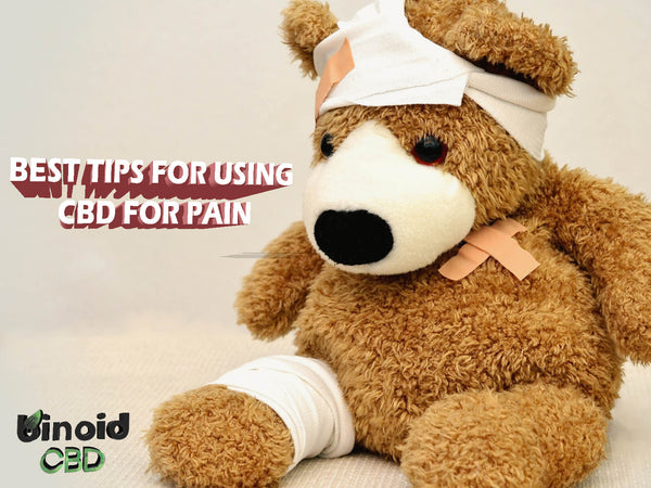 Best CBD for pain relief