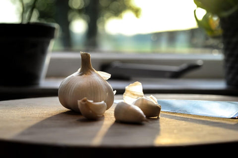 Garlic Immune System Boost Support