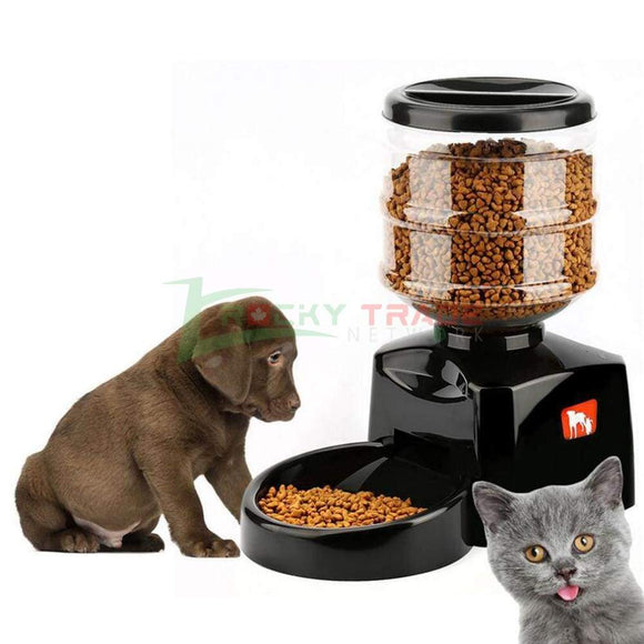 Automatic Pet Feeder With Voice Message Recording And LCD Screen - RockyTrade.net