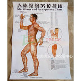 Human Acupuncture Wall Charts - RockyTrade.net