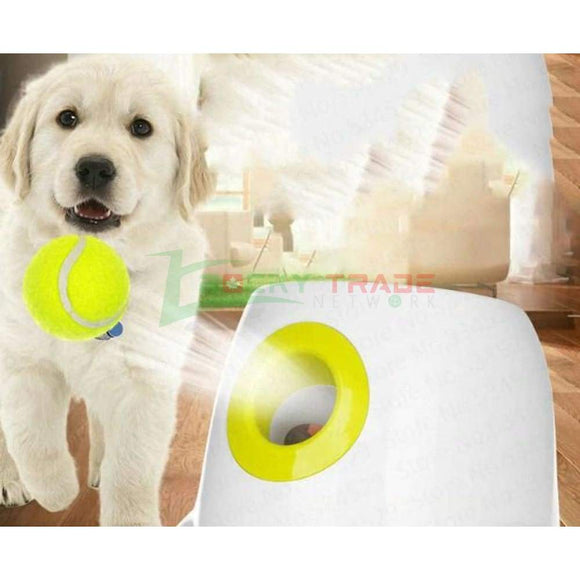 Interactive Dog Ball Launcher (50% OFF) - RockyTrade.net